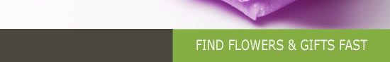 find flowers hampton